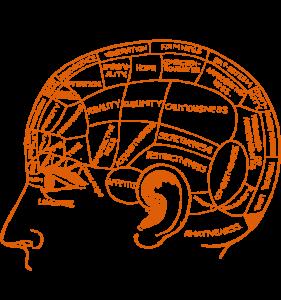 CBT-brain